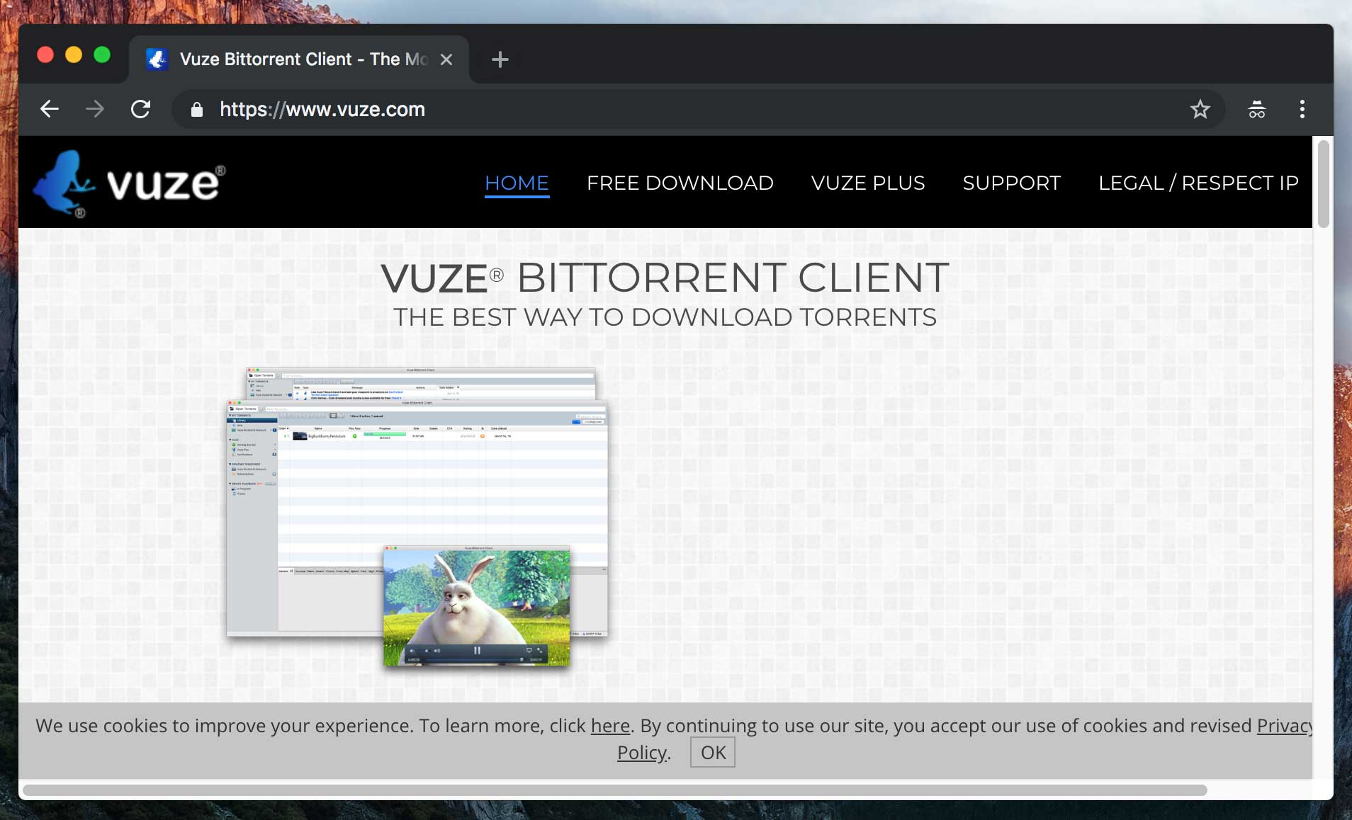 best torrent client